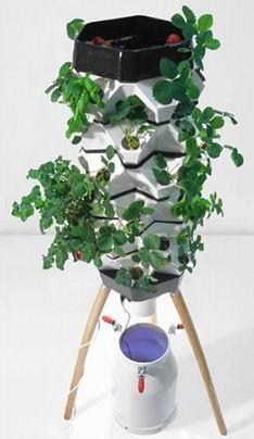 genmanipulierte pflanzen pro contra